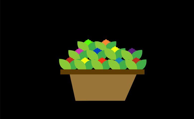 Tafel- en hangplanten